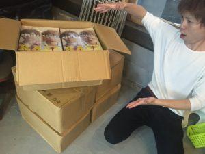 【折込用の印刷物4万枚】鹿児島フリーペーパー折込フリー新聞折り込みリビング鹿児島