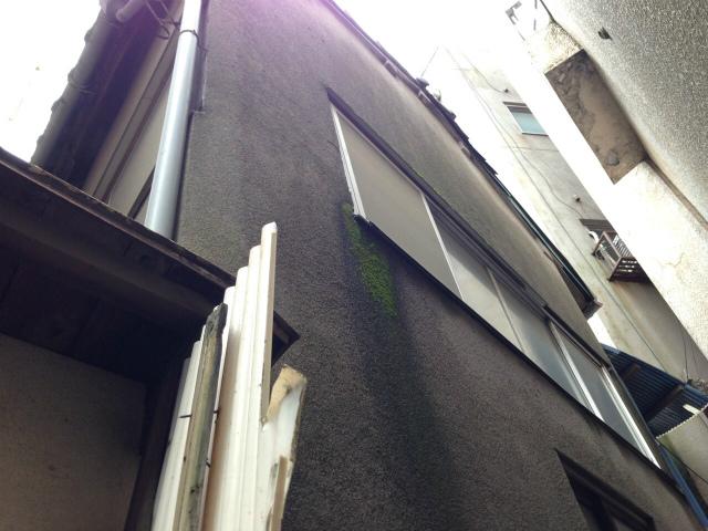 改装前の物件の裏口側。日当たりや風通しも悪く、傷みが激しい個所です。